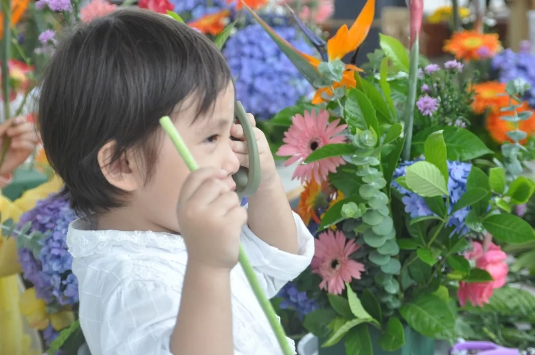 观摩、学习插花花艺7.webp