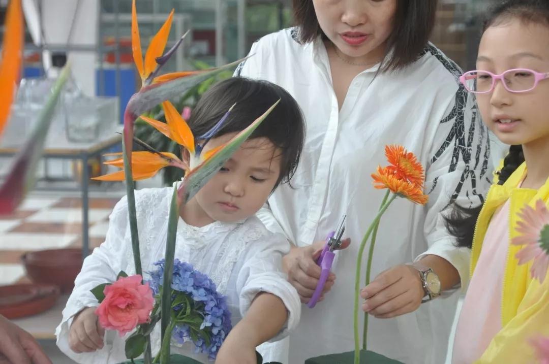 观摩、学习插花花艺3.webp