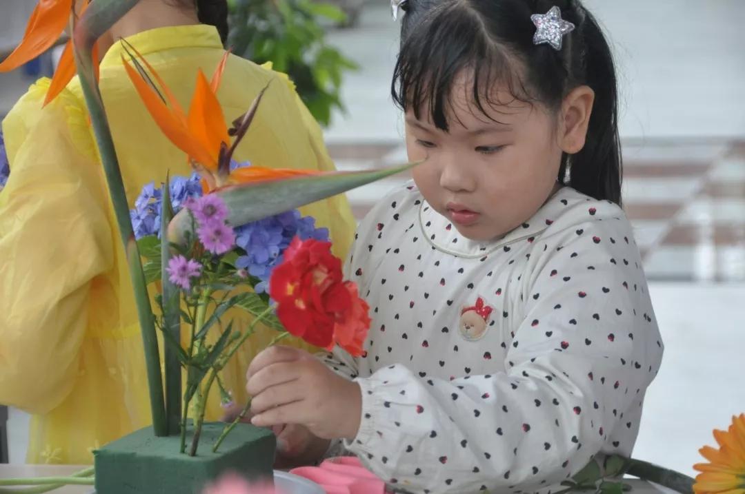 观摩、学习插花花艺6.webp