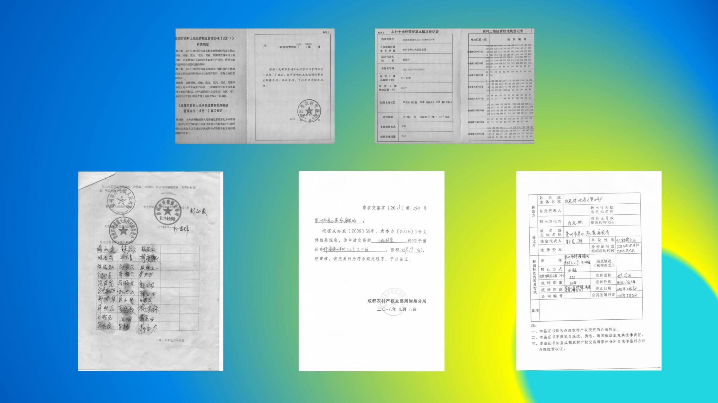 沈家船田园水乡智慧生态园 (23)