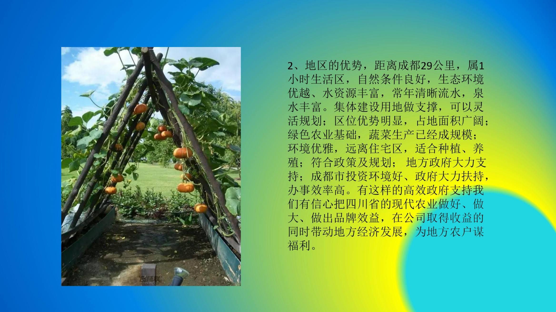 沈家船田园水乡智慧生态园 (14)