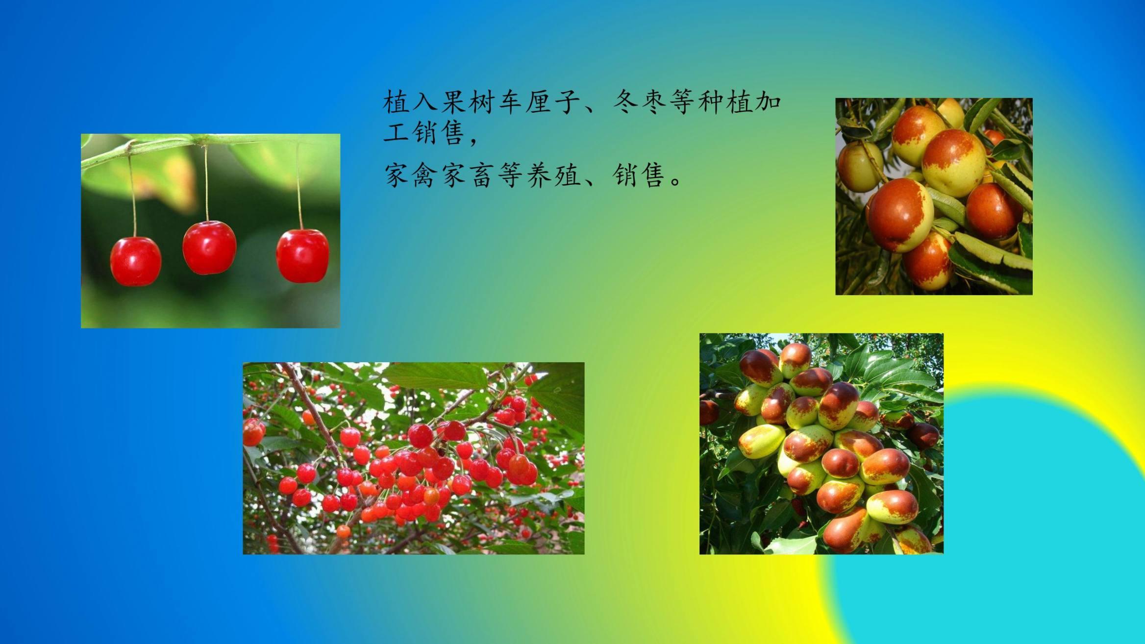 沈家船田园水乡智慧生态园 (32)