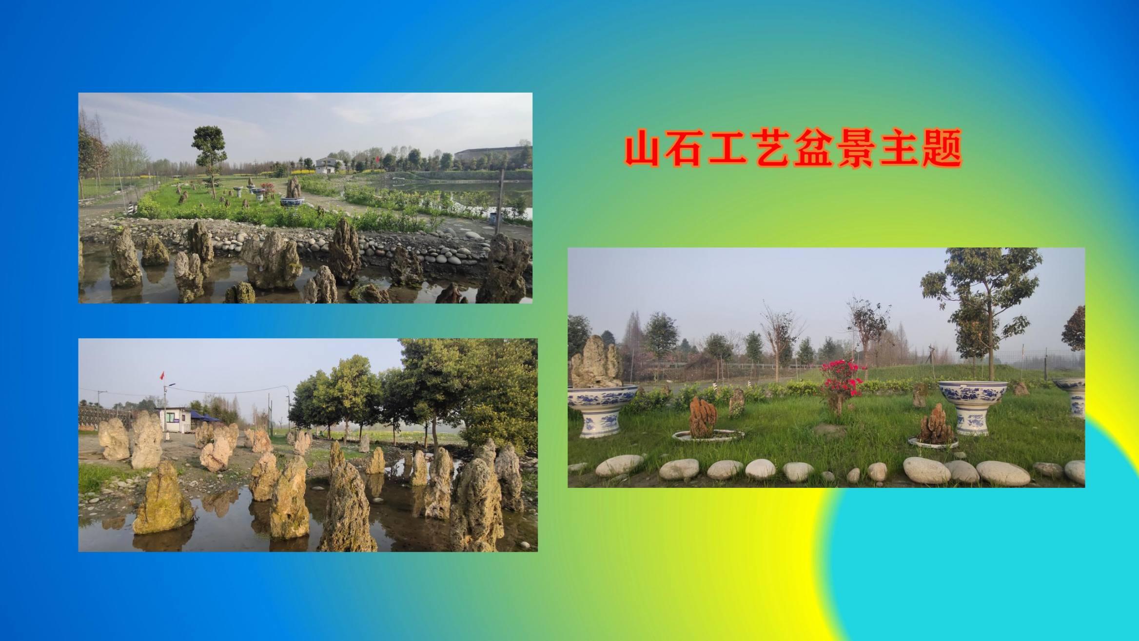 沈家船田园水乡智慧生态园 (26)