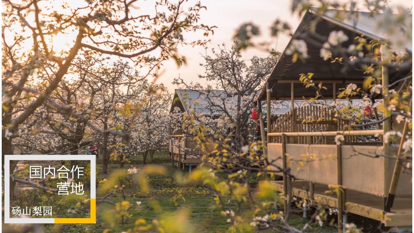 喜马拉雅野奢帐篷 (33)